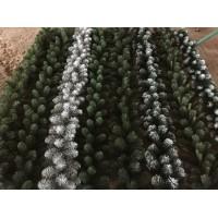 Гирлянды хвойные еловые